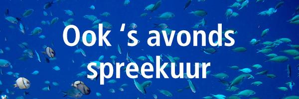 vissen-spreekuur